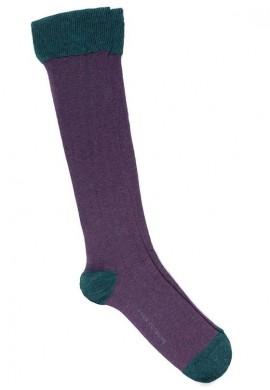 Viola - Verde campo